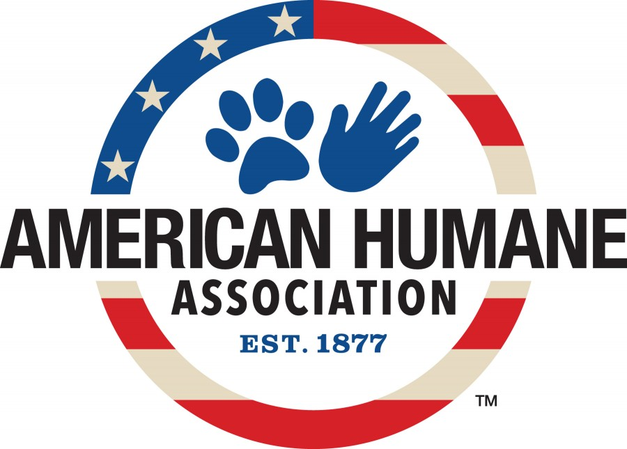 American Humane dogs