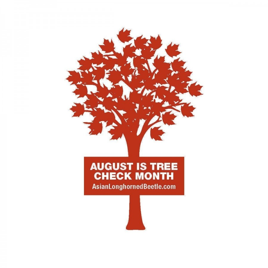 August tree month