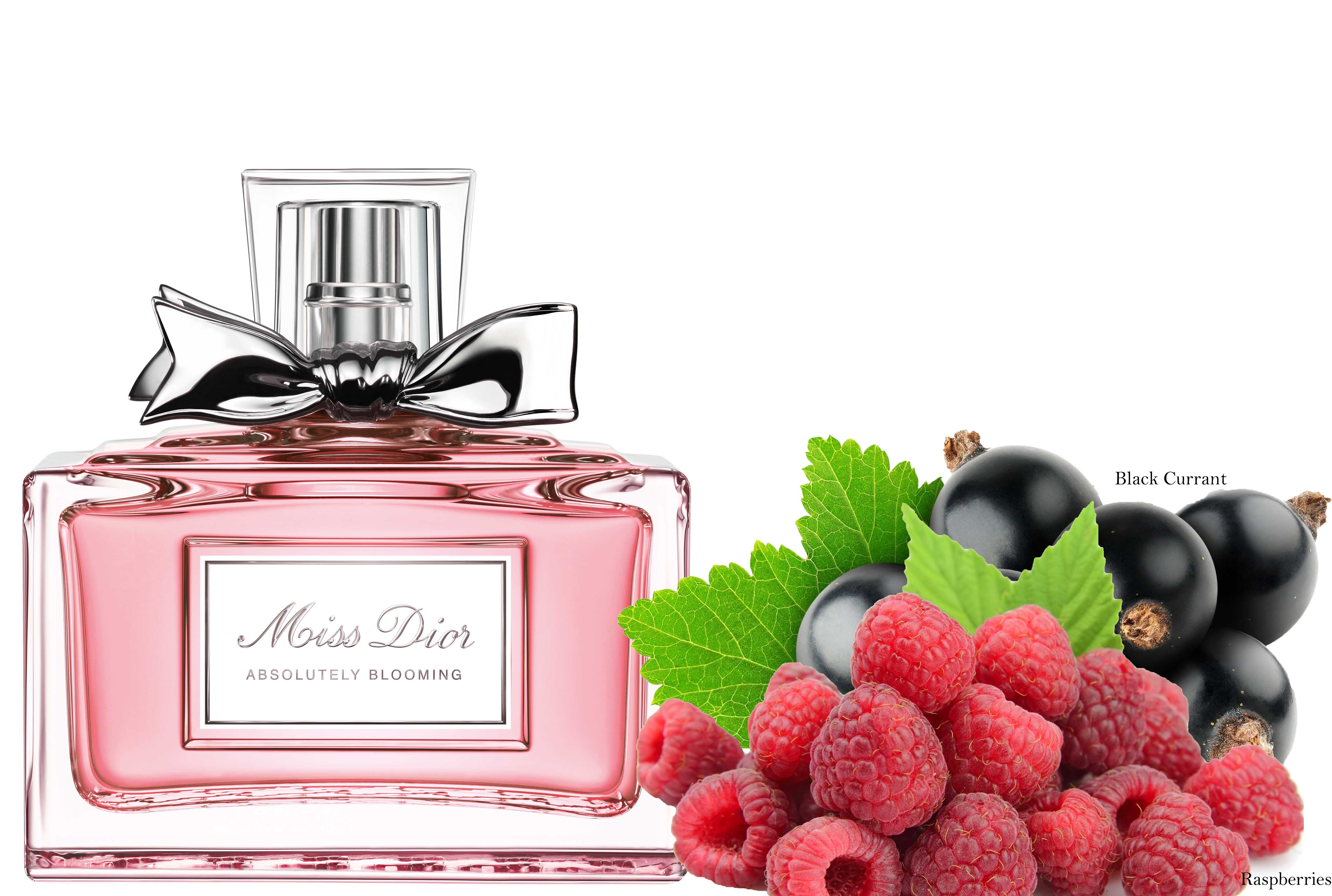 Miss Dior, fragrance review - LATF USA