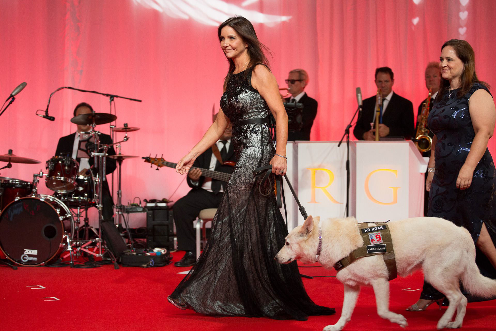 petco foundation, celebration of love