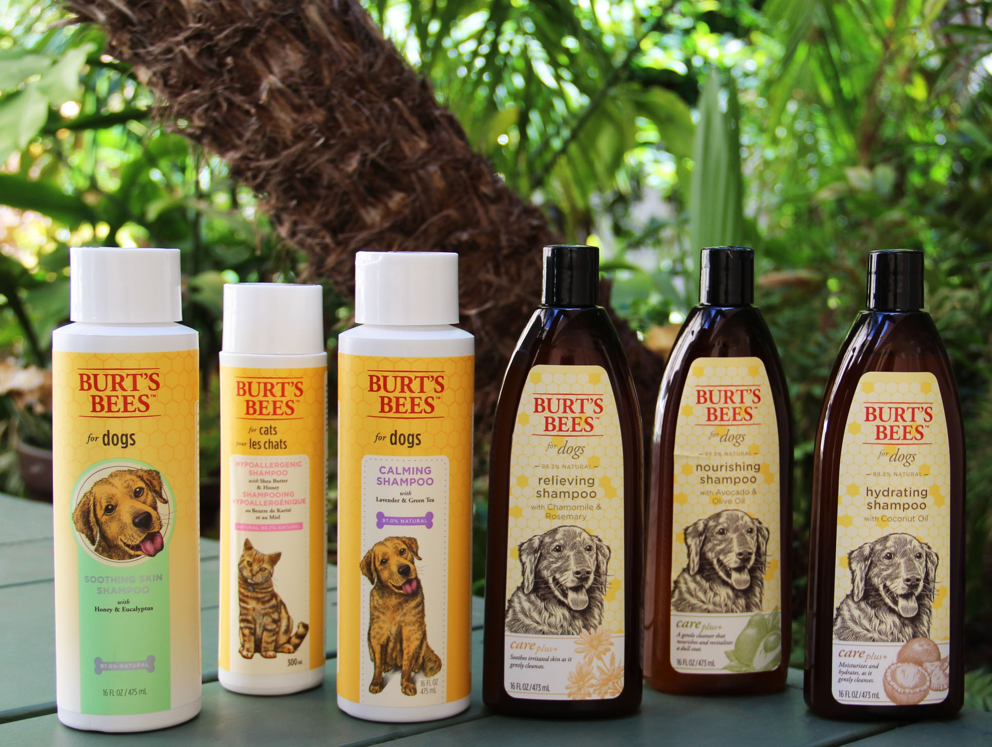 Burt Bees Products