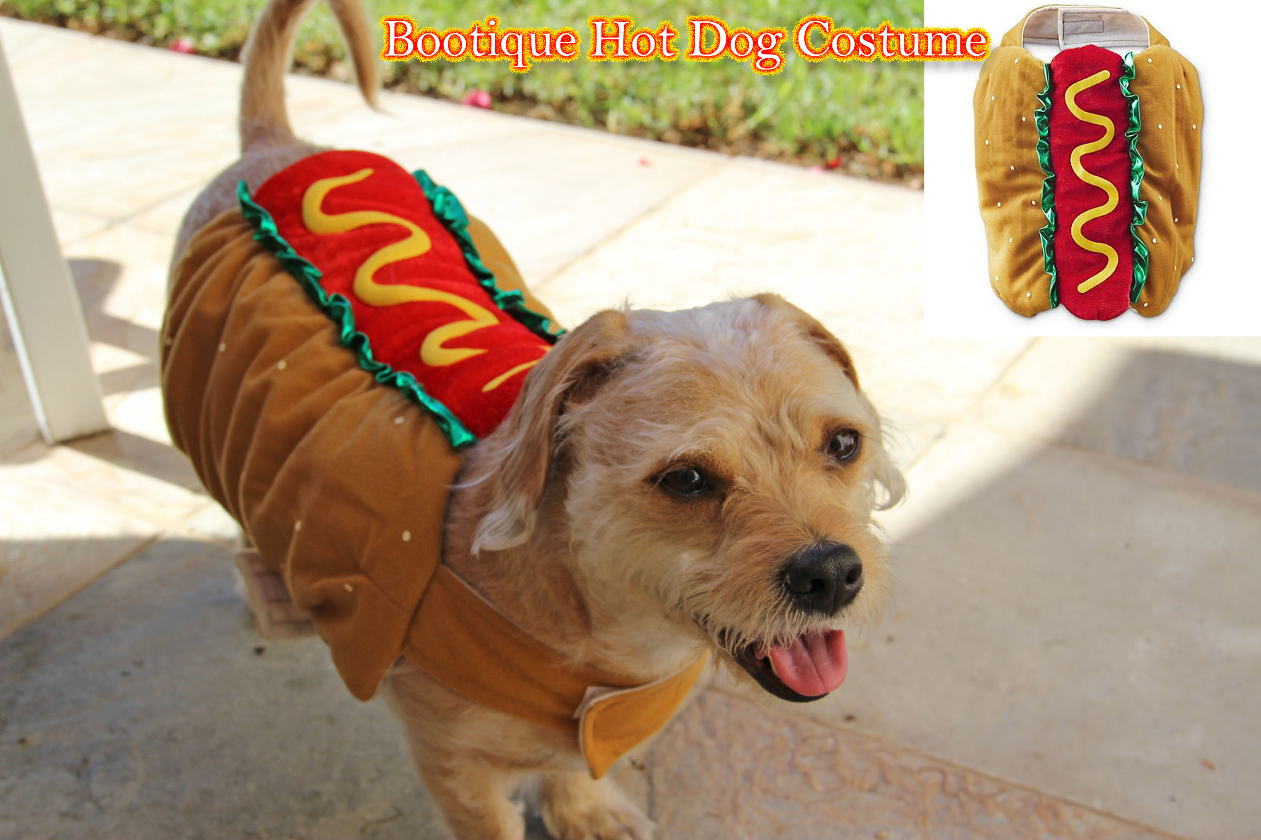 petco hot dog halloween costume