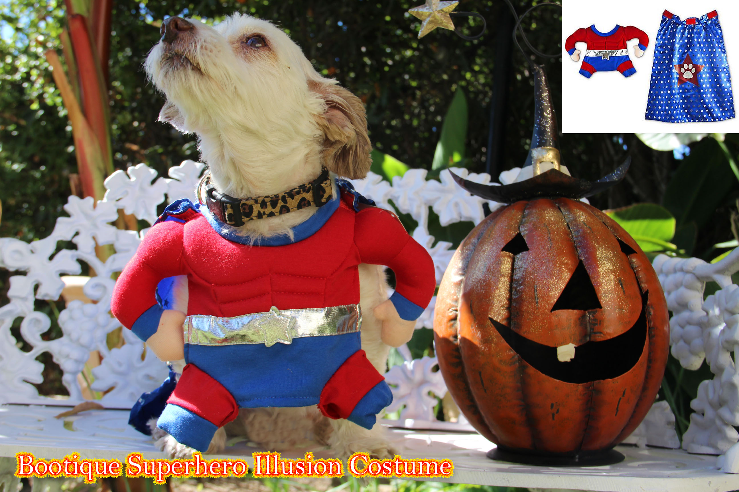 petco, halloween costume, superhero