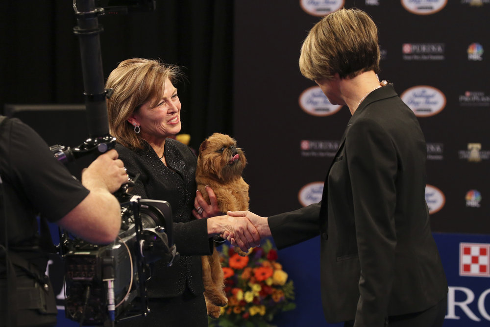Susan DePew, handler, Brussels Griffon named Newton Best in Show Winner