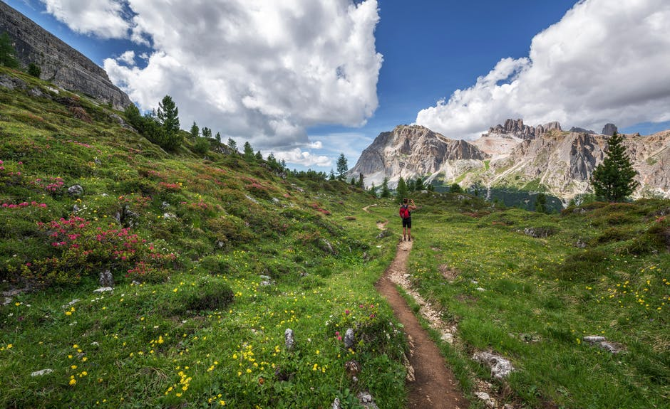 national forest foundation, summer of trails